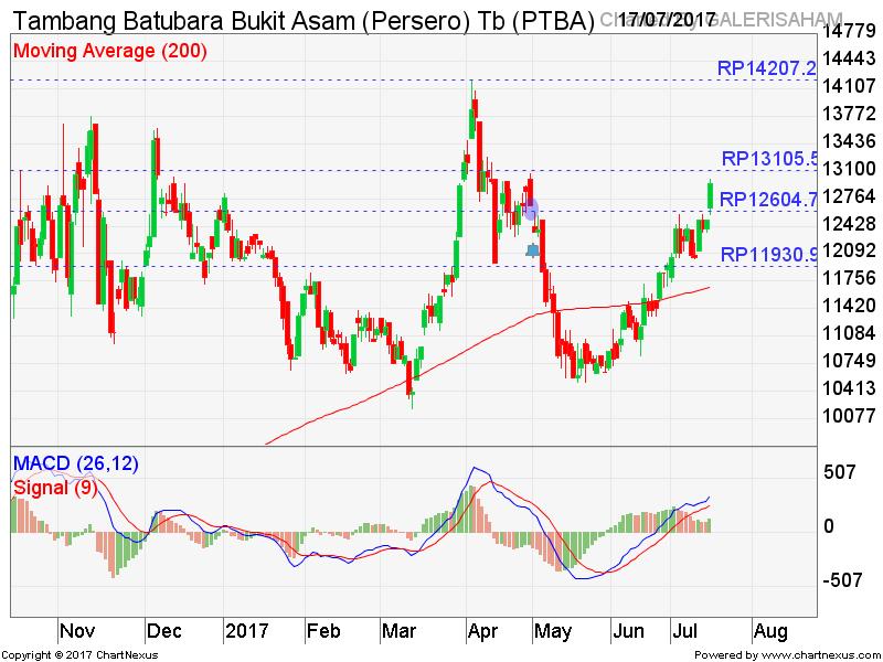 PTBA Melanjutkan Rally Pasca Bottom Reversal, Hold